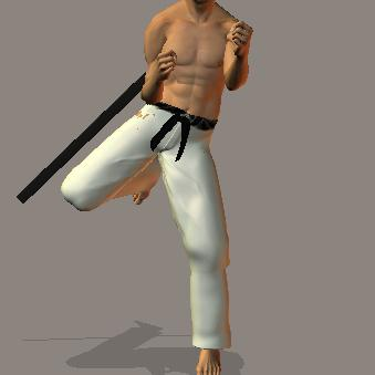 Karate: las patadas Mawashi%20age